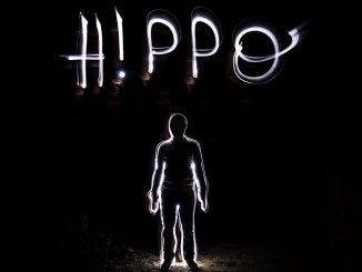 hippocampe fou Sam Mass Heuzé
