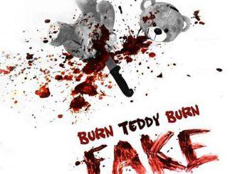 Burn Teddy Burn